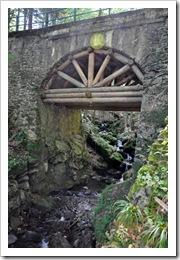 , # 1 Wyzwanie – W moim tajemniczym ogrodzie…